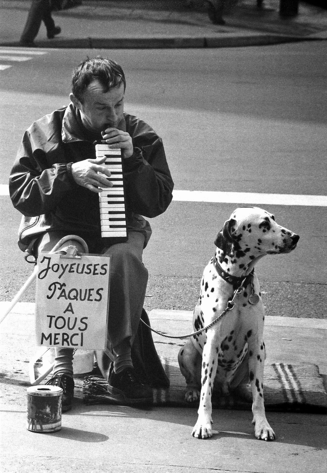 The Dalmatian Charmer - Paris - France - 1995